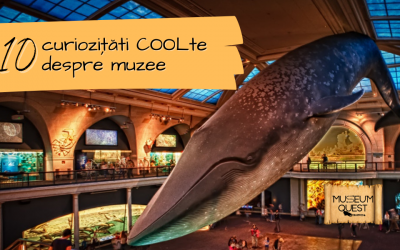 10 COOLte curiosities about museums